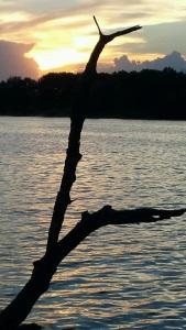 sunset park - springfield